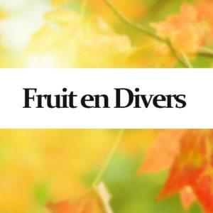 Topliquid Fruit en Divers